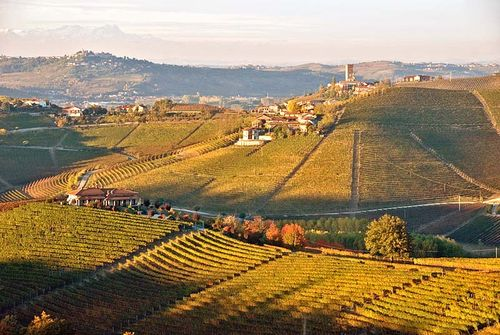 Barbaresco-Oct07-D4403sAR80